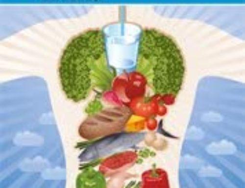 Qué es la alimentación orgánica