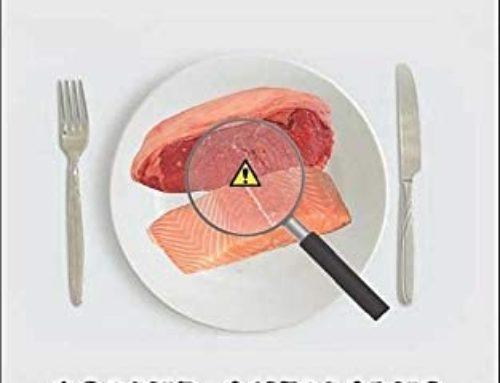 Sostenibilidad alimentaria concepto
