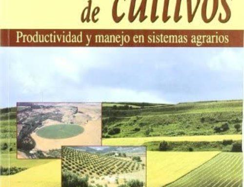 Productos sostenibles y ecológicos